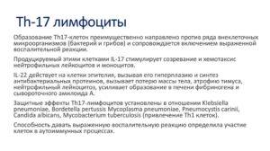 Лимфоциты 17%