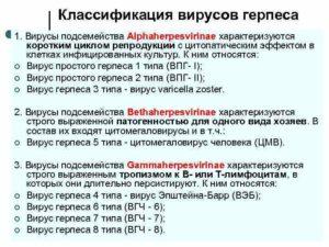 Персистирующие ВЭБ и вирус герпеса 6 типа