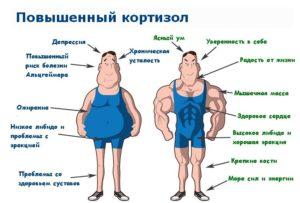 Лишний вес и повышенный кортизол