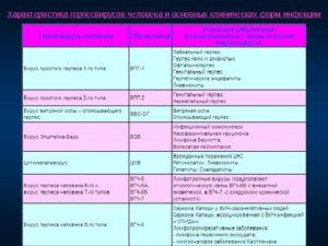Иммунограмма и герпес- инфекции