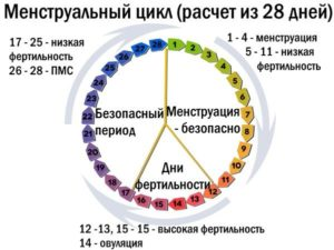 Как считать цикл после Эскапела?