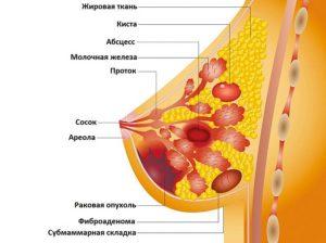 Комочки в груди