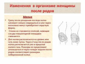 Изменения в теле после родов