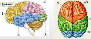 Боли в правой теменной доли головного мозга