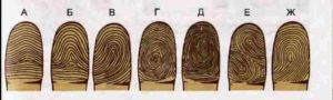 Линии на подушечках пальцев