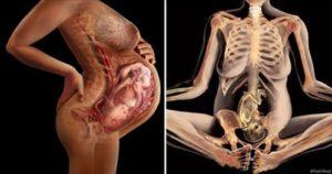 Боль в лобке 18 недель беременности