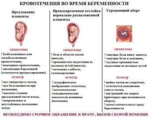 Кровотечение и трихопол во время беременности