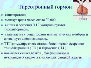 Коррекция ТТГ