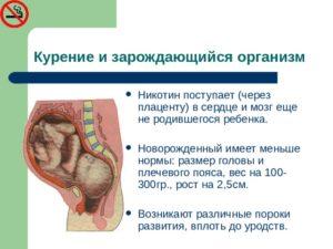 Курение и плацента