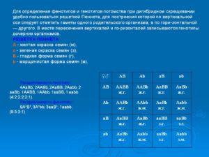 Как определить фенотип по таблице?!