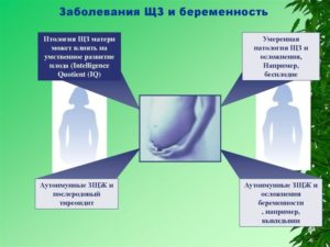 Планирование беременности и аутоиммунный тиреоидит