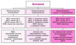 Какая анемия?