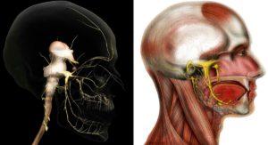 Болит голова после неврита