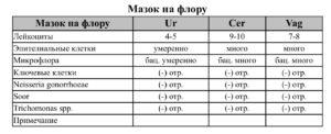 Мазок на флору (лейкоциты, фибрин и все остальное)