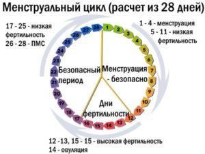 Как отсчитать цикл после приема постинора?