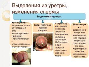 Кровянистые выделения из головки при лечении уреаплазмы