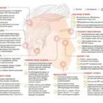 Какие заболевания могут возникнуть после выкидыша