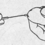 Пимафуцин и выделения