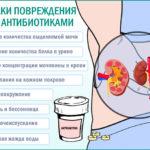 Как влияет флебодия на состояние миомы и активного эндометриоза?