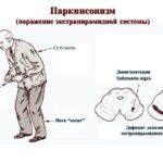 Кровяные точки на теле